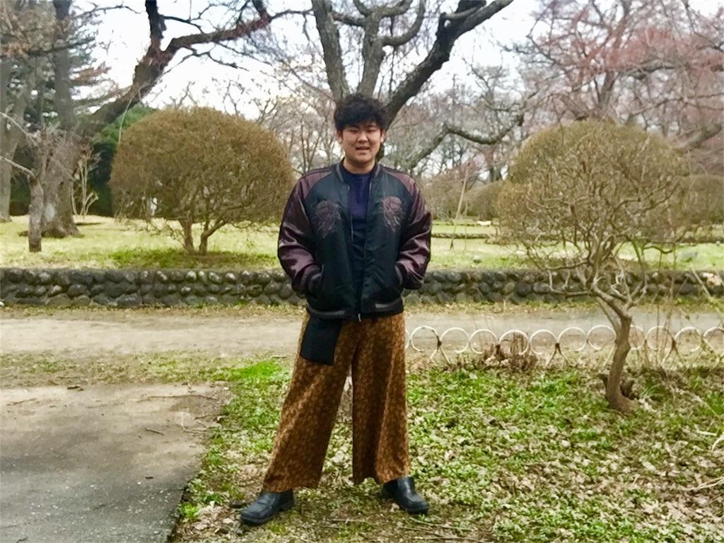 f:id:iwatenoheiwa:20180408194009j:image