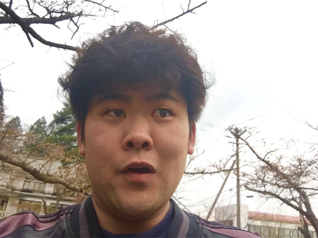 f:id:iwatenoheiwa:20180408194150j:image