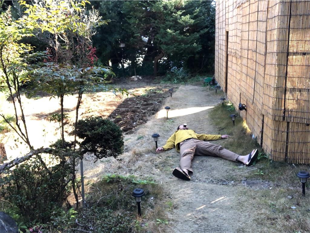 f:id:iwatenoheiwa:20190203164903j:image