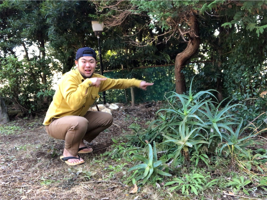 f:id:iwatenoheiwa:20190204215703j:image