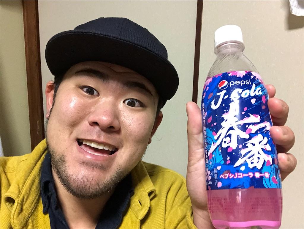 f:id:iwatenoheiwa:20190205223525j:image