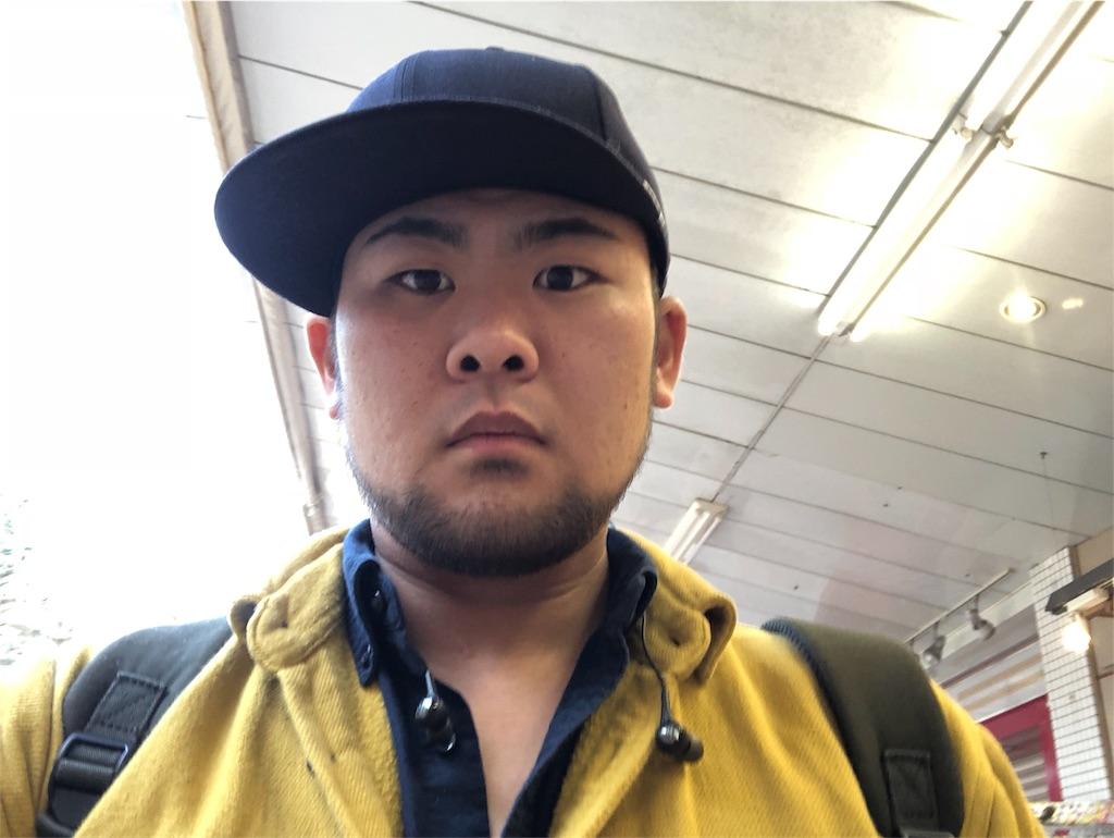 f:id:iwatenoheiwa:20190215205259j:image