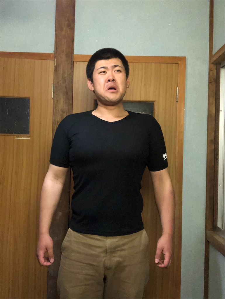 f:id:iwatenoheiwa:20190513111114j:image
