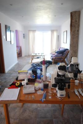 f:id:iwayou:20101117175614j:image