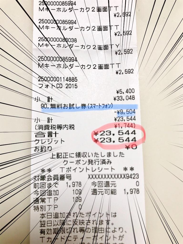 f:id:iyoiyo_iyoco:20190206212103j:image