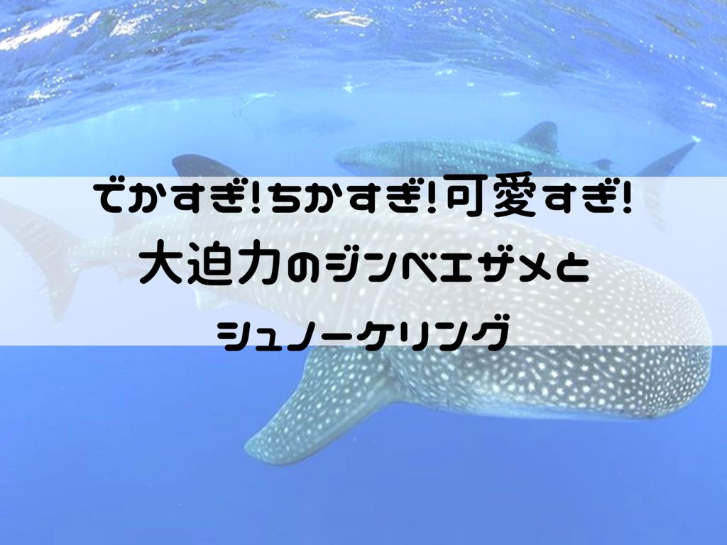f:id:iyoiyo_iyoco:20190310222541p:image