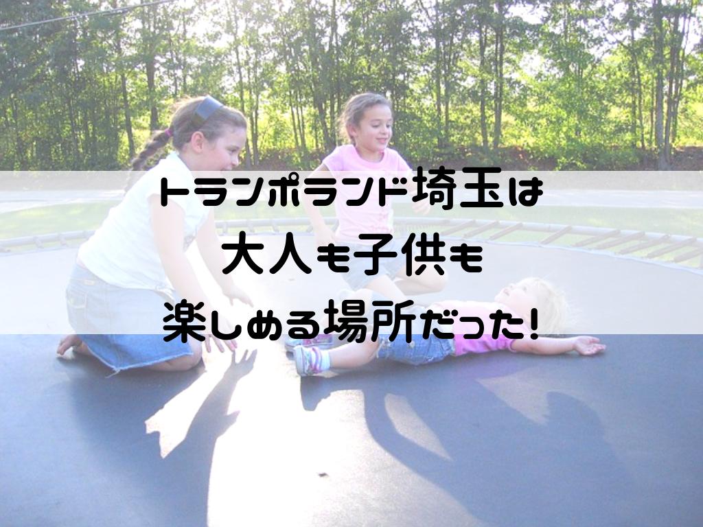 f:id:iyoiyo_iyoco:20190312134432p:image