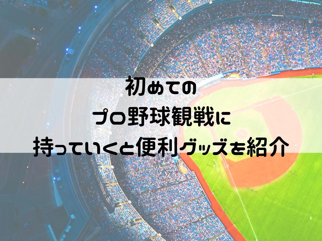 f:id:iyoiyo_iyoco:20190630213705p:image