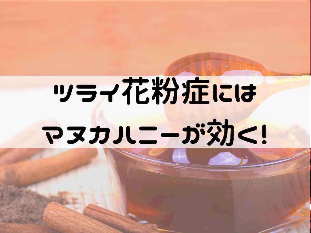 f:id:iyoiyo_iyoco:20210224112031p:image