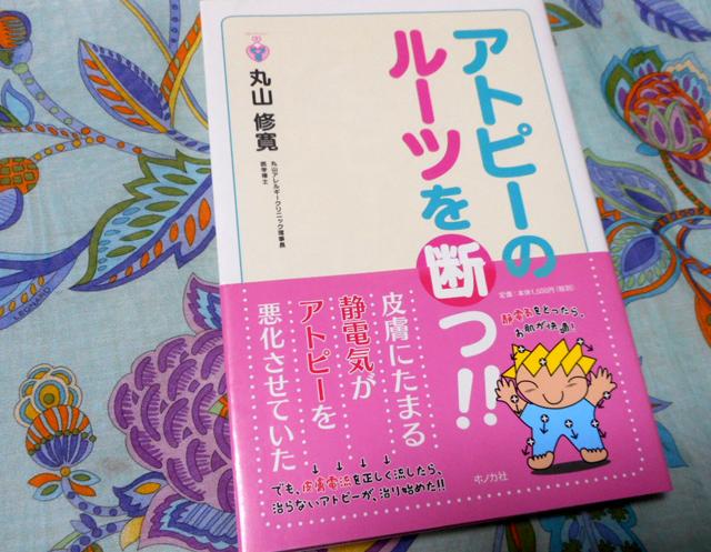 丸山修寛『アトピーのルーツを断つ!』
