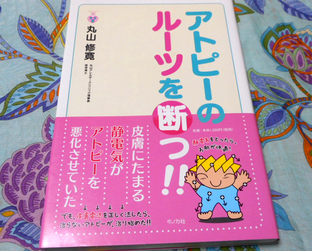 f:id:izawaharuaki:20170904160455j:plain
