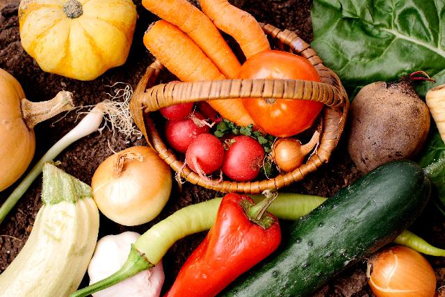 腸内細菌のバランスを整える食物繊維
