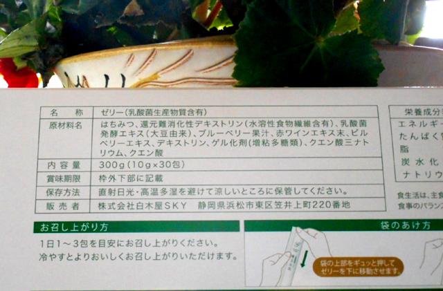 f:id:izawaharuaki:20180622163544j:plain