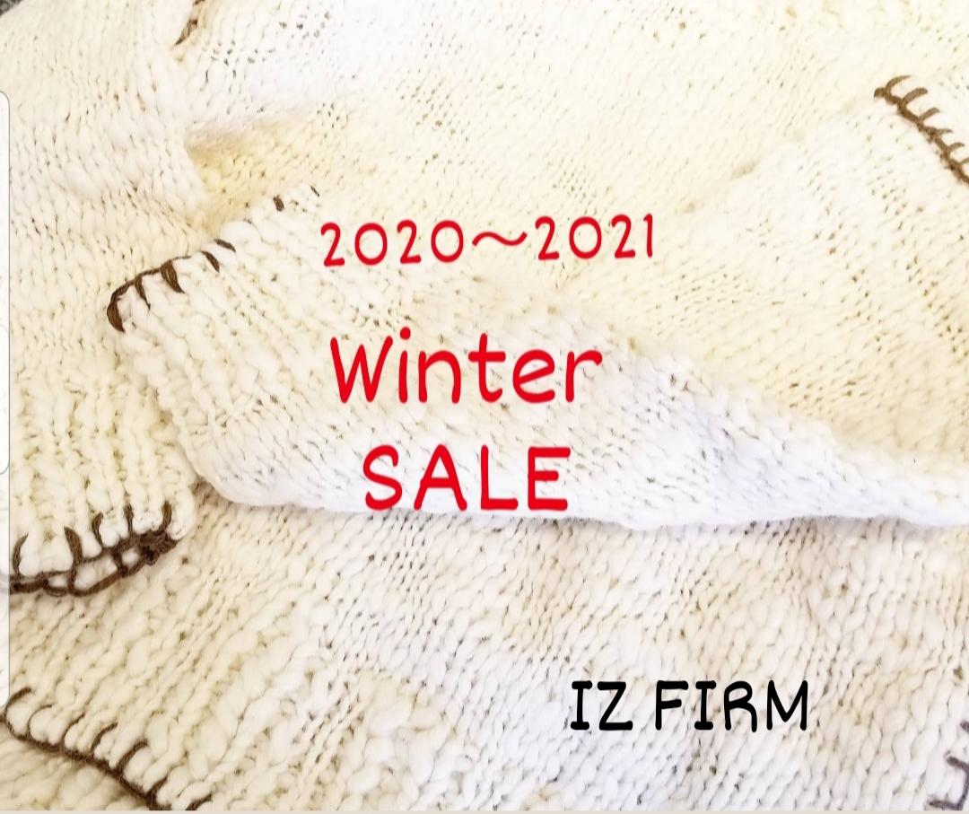 f:id:izfirm:20201220230823j:plain