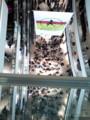 上から目線のグランフロント大阪中央通路