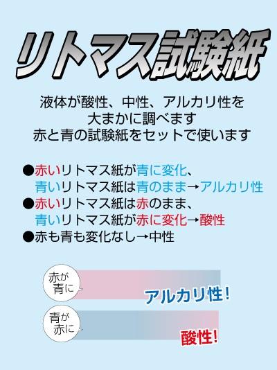 f:id:izumi_aki:20181011190928j:plain