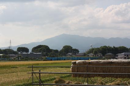 海老名耕地と相模の大山 (2010.10.08撮影)