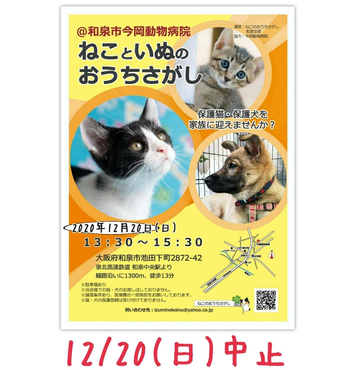 おうち 大阪 の ペット 大阪府のペット火葬・ペット葬儀なら「あいわペットセレモニー」
