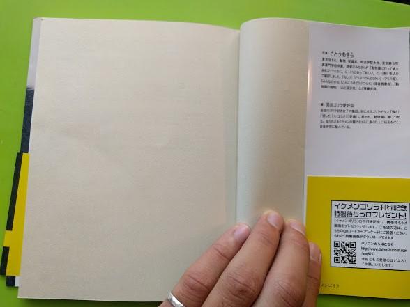 f:id:izumojiro:20171104122553j:plain