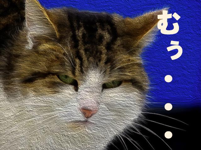 f:id:izyouari:20170713110403j:plain