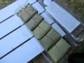 柿の葉寿司・2