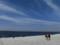 マーブルビーチ・2