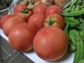 8DR氏の野菜・4