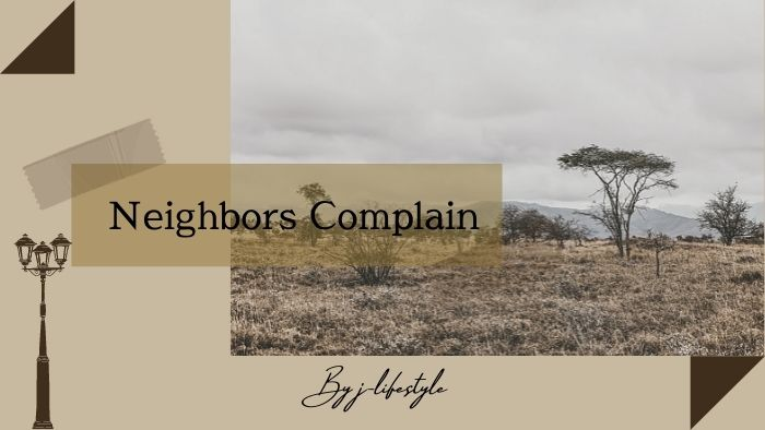 Neighbors Complainとは何者?意味やおすすめ楽曲まとめ