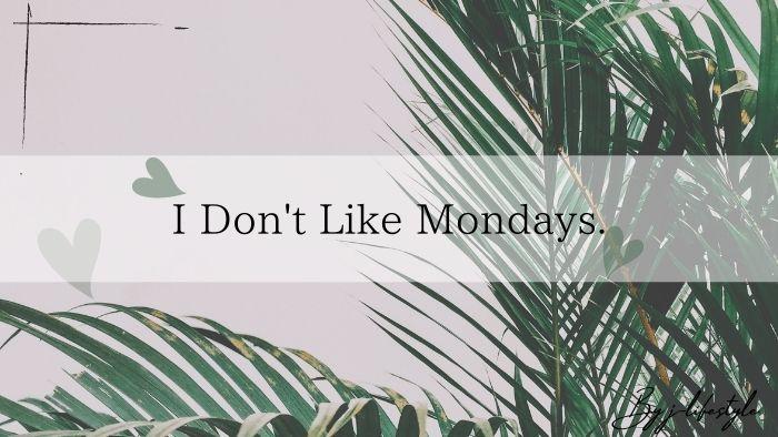 【おしゃれの塊】 I Don't Like Mondays. とはどんなバンド?おすすめ曲もご紹介