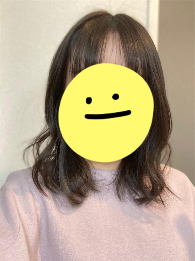 f:id:j-wo-sasagi:20210119205644j:plain