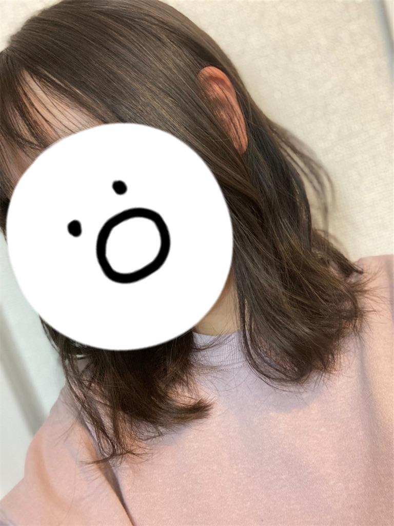 f:id:j-wo-sasagi:20210119205658j:plain