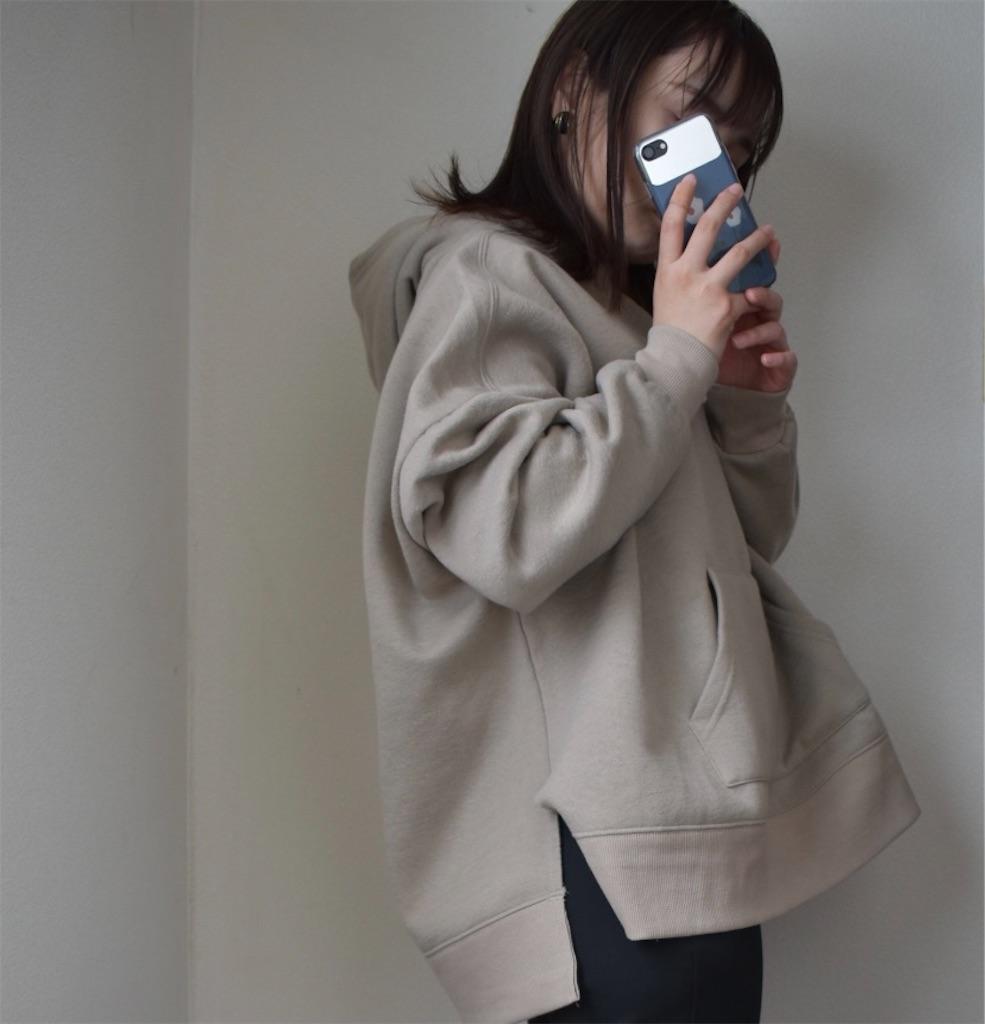 f:id:j-wo-sasagi:20210207082839j:image