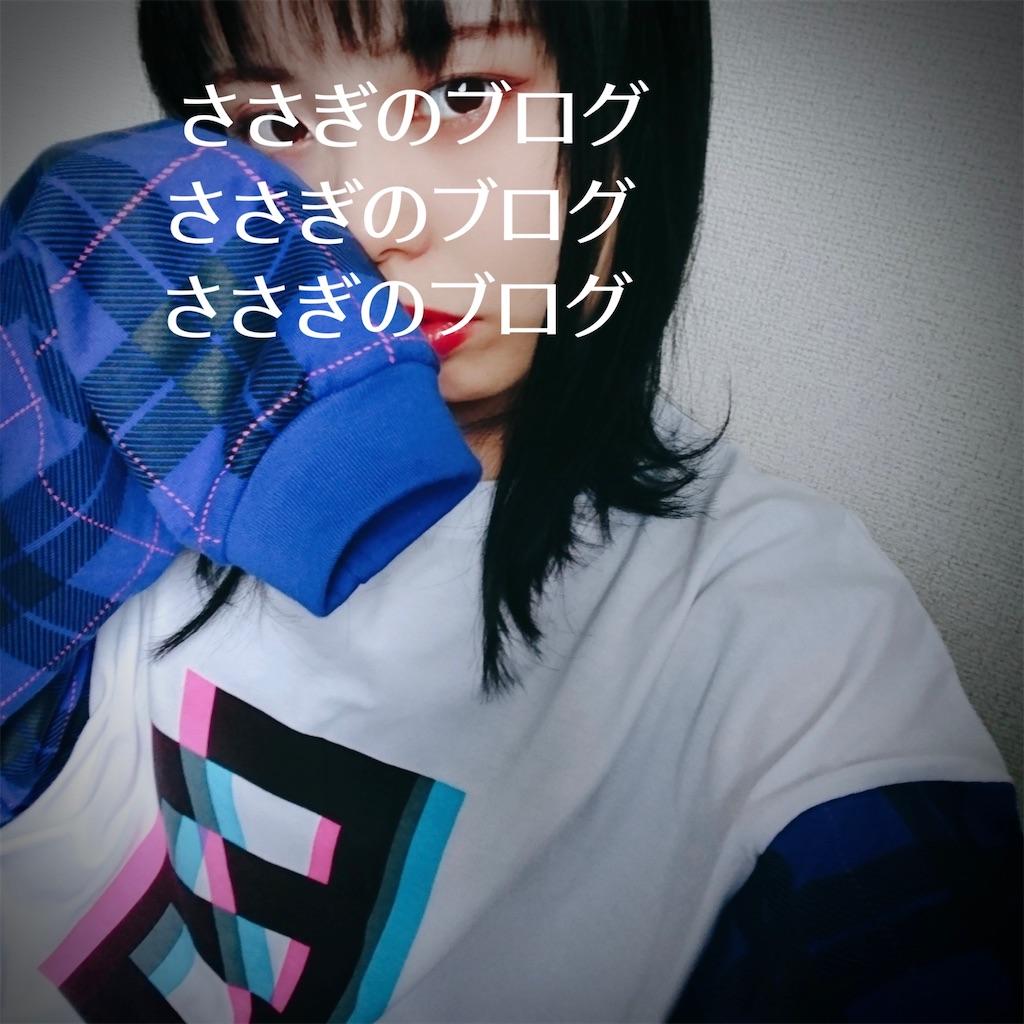 f:id:j-wo-sasagi:20210218184924j:image
