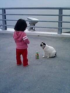 どうしても猫にジュースをあげたいの