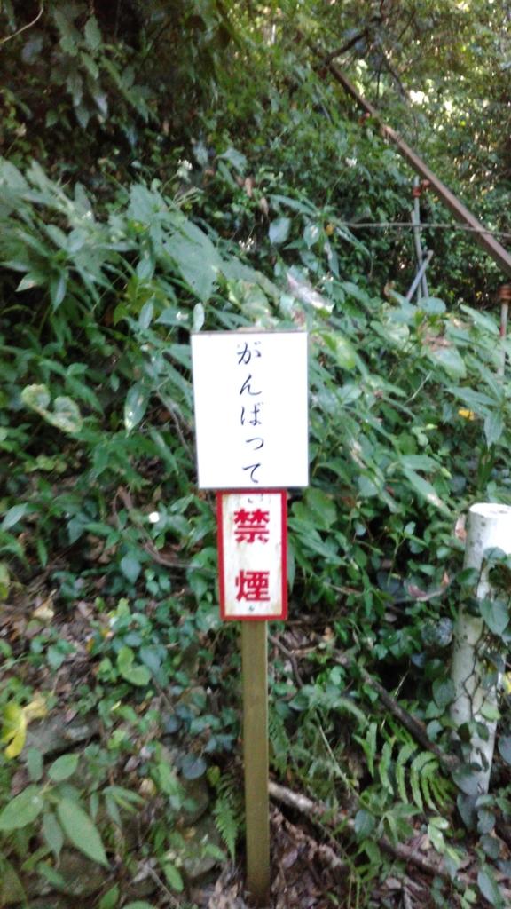 f:id:j_furusawa:20160813170654j:plain