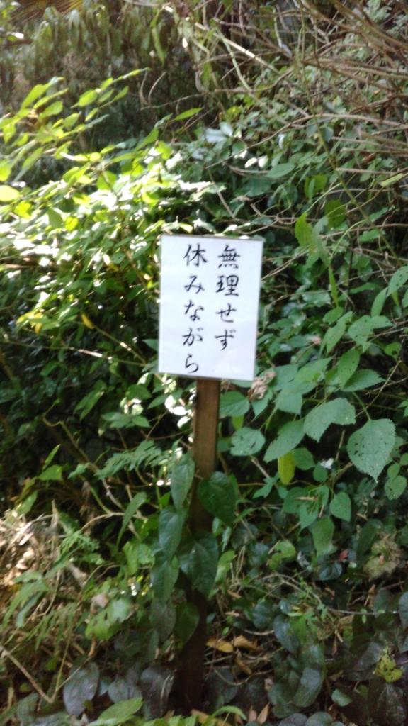 f:id:j_furusawa:20160813170722j:plain