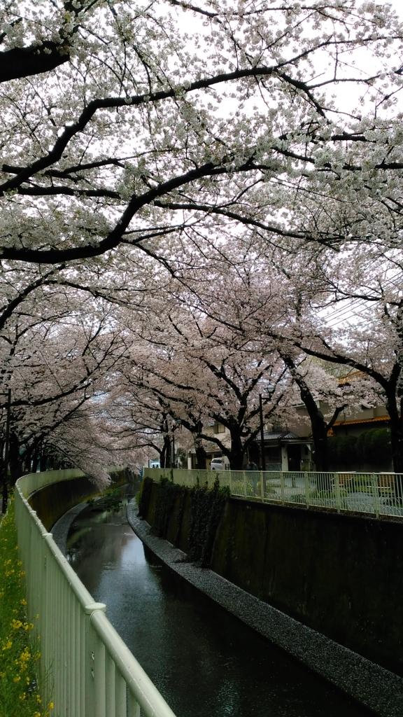 f:id:j_furusawa:20170409163333j:plain