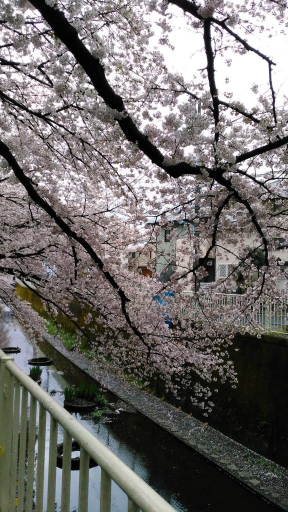 f:id:j_furusawa:20170409163414j:plain