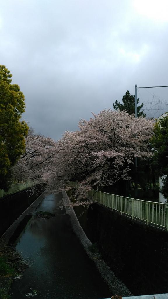 f:id:j_furusawa:20170409163433j:plain