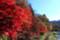 [紅葉][塩原渓谷][塩原温泉郷][那須塩原][塩原温泉]