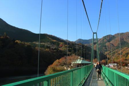 [もみじ谷大吊橋][紅葉][那須塩原][橋]