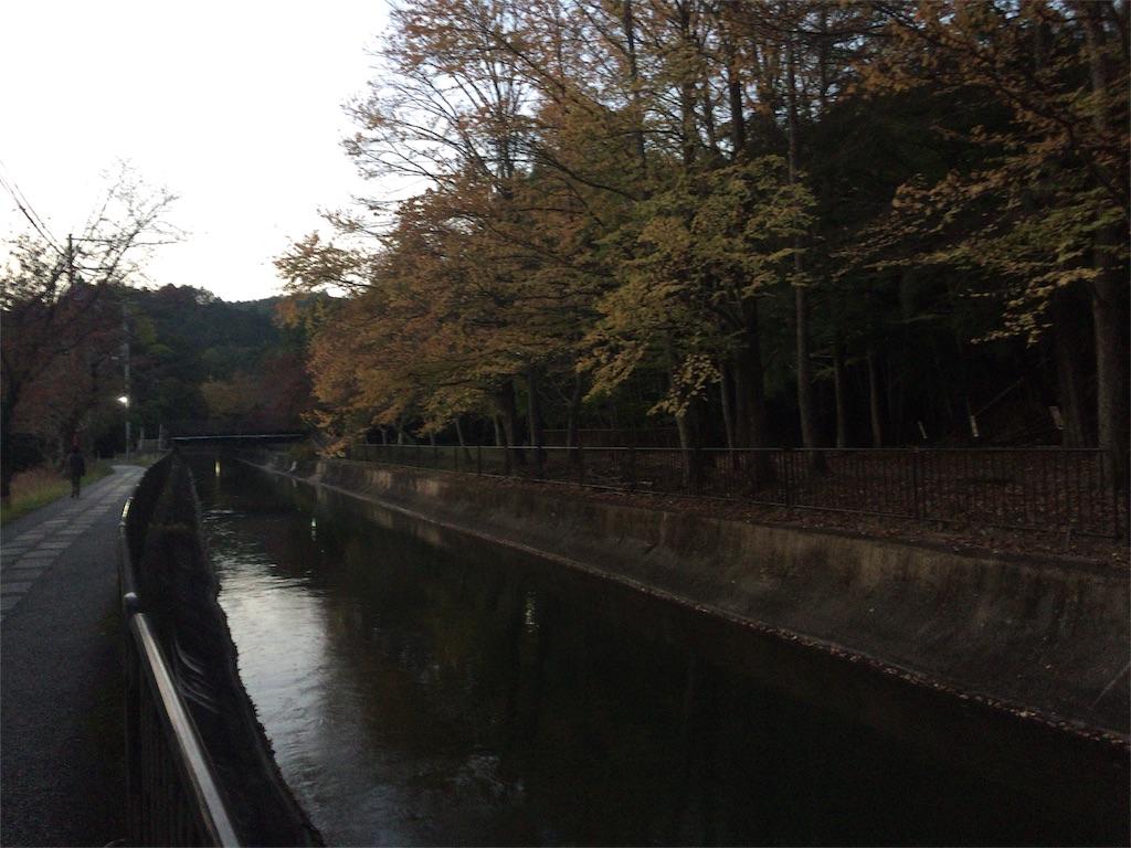 f:id:japajin:20161106231640j:image