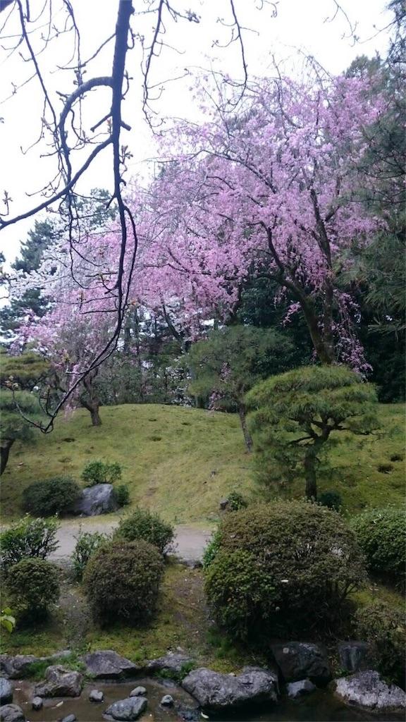 f:id:japajin:20170410214044j:image