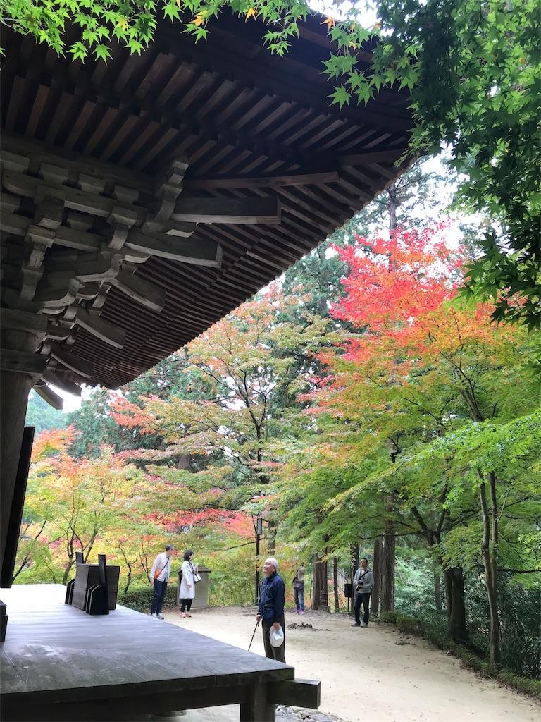 f:id:japajin:20181116052313j:image