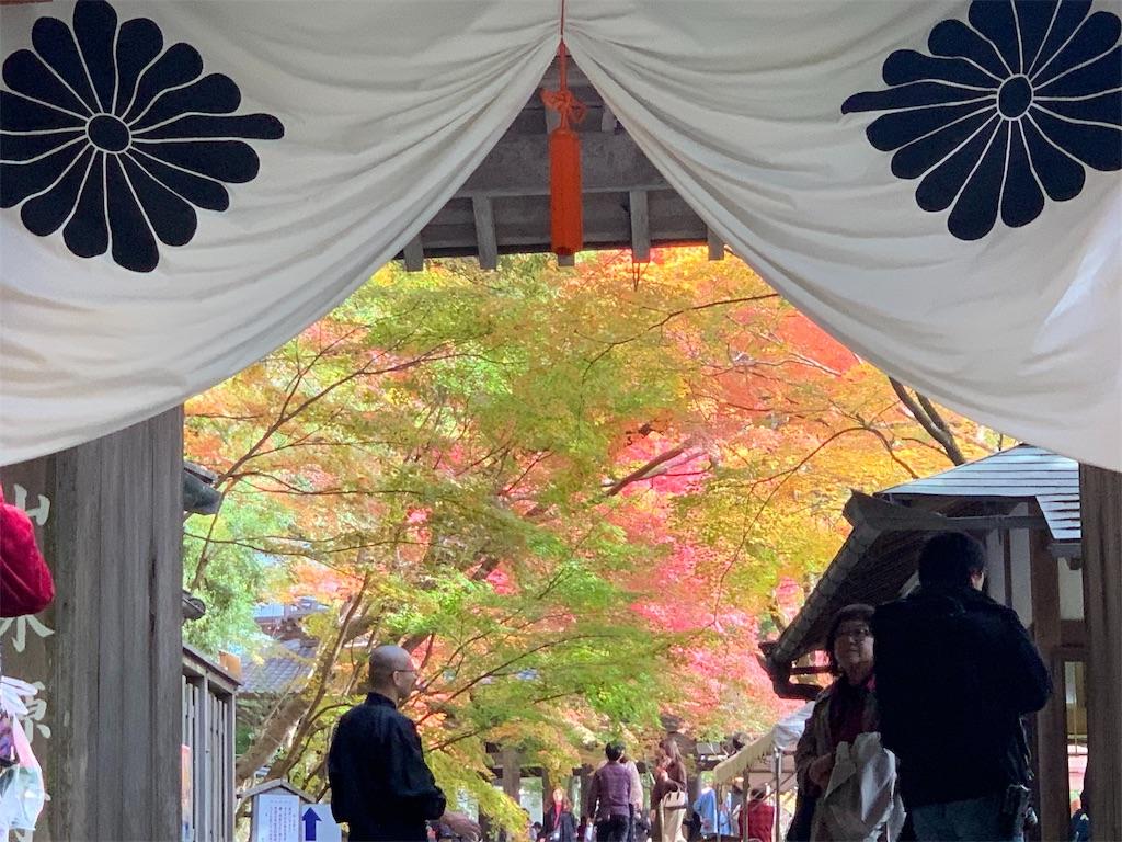 f:id:japajin:20191119120054j:image