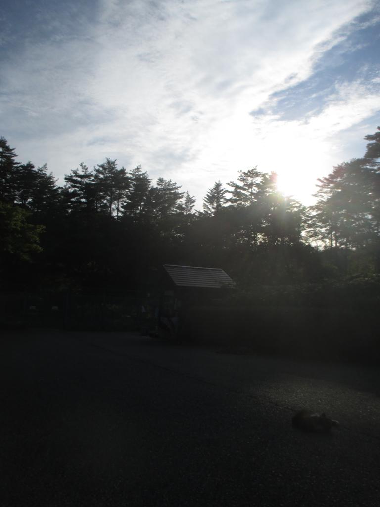 f:id:japan-energy-lab:20180821113930j:plain