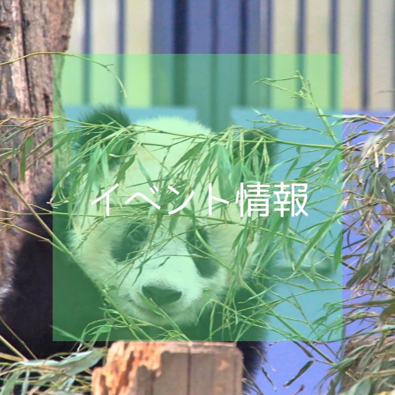 f:id:japan-information:20180911025645p:plain