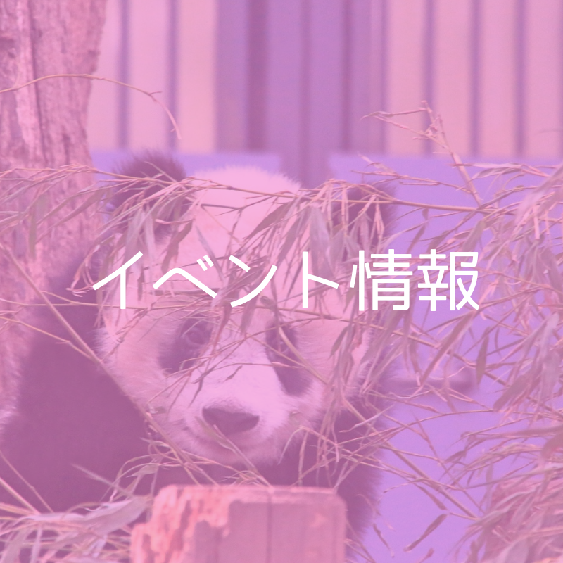 f:id:japan-information:20180921022020p:plain