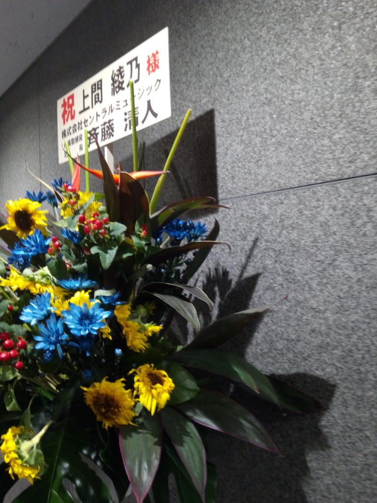 f:id:japan-tama:20180817211810j:plain