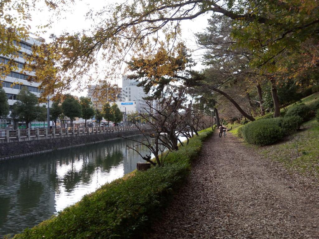 f:id:japan-tama:20190104153038j:plain